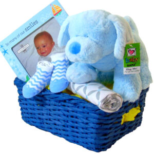 Baby Boy Basket Gift