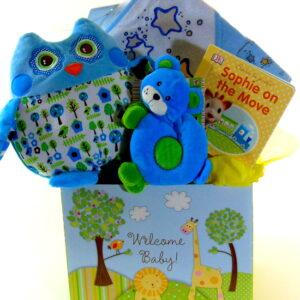 Welcome Baby Boy Gift Box