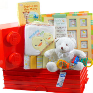 Baby Basket Red
