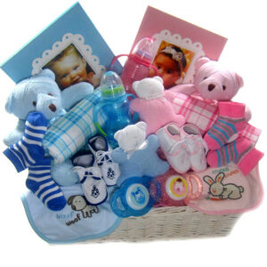 Twins Baby Baskets